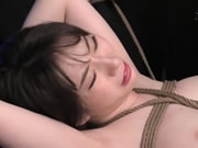 Busty Brunette Got Her Ass Pounded In Hard Bondage Action