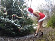 Christmas Tree King